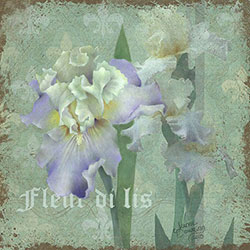 Fleur di lis Online Class with Jeanne Downing CDA