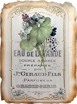 French Perfume Online Class with Jeanne Downing CDA