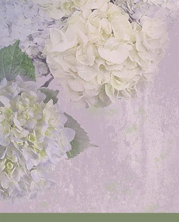 Hydrangea Papers Background designed by Jeanne Downing