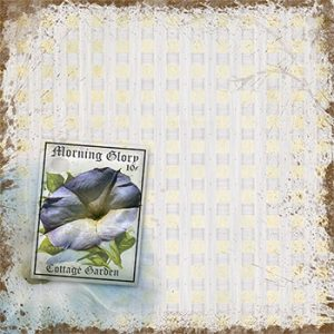 Vintage Romance Morning Glory Background designed by Jeanne Downing