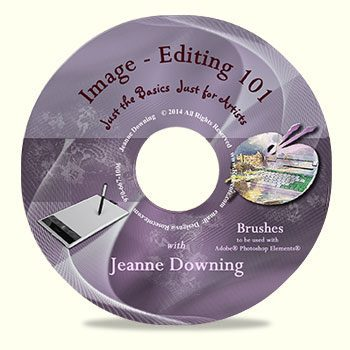 Image Editing 101 Brushes DVD by Jeanne Downing