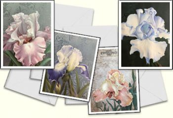 Iris Note Cards by Patsy Schultis